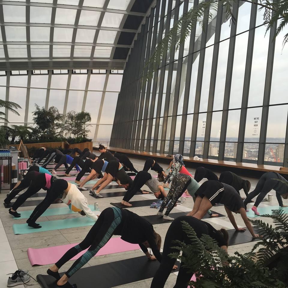 yoga gardern