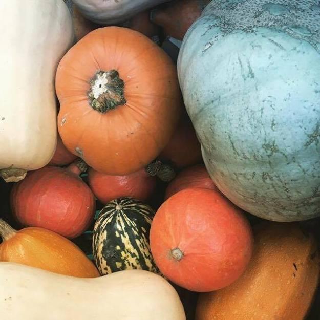 broadway-market-pumpkins